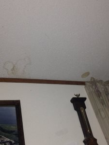 Painting Popcorn Ceiling Cover Photo