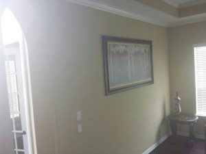 Living Room Wall Cover Photo