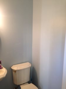 VR Powder Room Paint Cover Photo