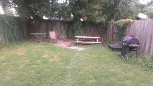 Backyard Sprucing Cover Photo