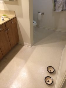 Kitchen Floor And Bathroom Remodel Cover Photo