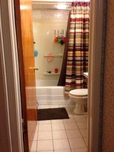 Bathroom Update Cover Photo