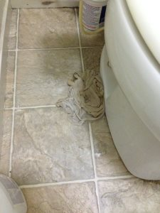 Fix Toilet Seat Leakage Cover Photo