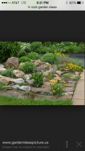 Drainage And Rock Garden Cover Photo
