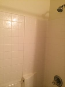 Guest Bath Remodel  Cover Photo
