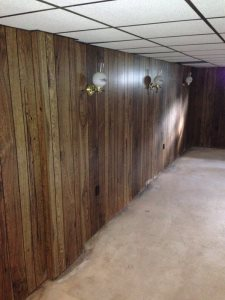 Mold Remediation  Cover Photo