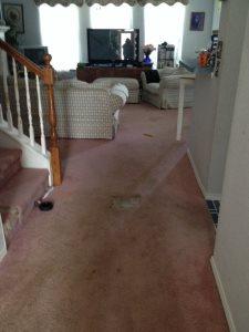 Hardwood Floors On 3 Rooms Cover Photo
