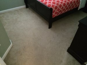 Wool Carpet Price