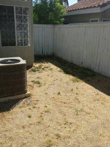 Lawn Sprinkler System Cost