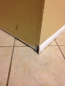 Molding Trim Work Cover Photo