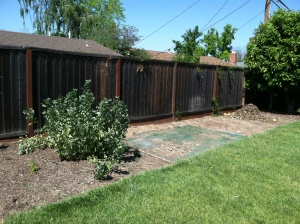 Re Mulch & Restore Planting Area Cover Photo