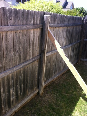 How Much Does a Fence Cost
