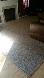 Carpet  Cover Photo