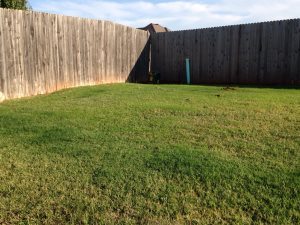 Leveling Ground Cover Photo