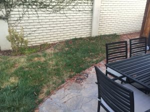 Lawn Replacement  Cover Photo