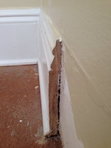 Baseboard Trim Replacement Cover Photo