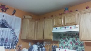 Cabinet Refinish And Installation Cover Photo