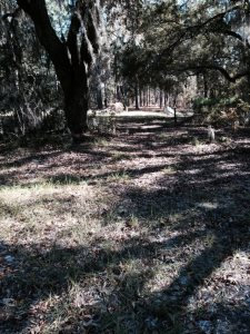 Landscape Grading Cost