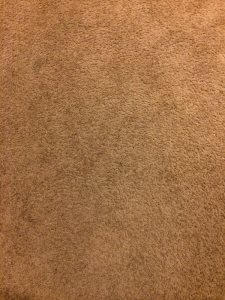 Carpet Clean And Door Install Cover Photo