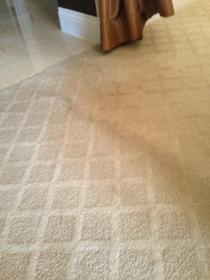 Carpet Restretch Cover Photo