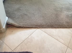 Carpet Repair Cover Photo