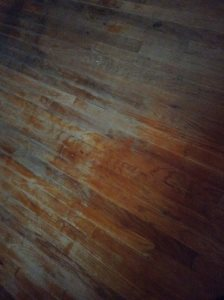 Floor Refinishing Cover Photo