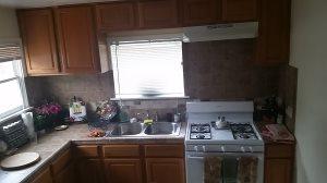 Kitchen Renovations on a Budget