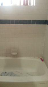 Tile Shower Cover Photo