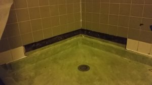 Master Bath Mold Remediation  Cover Photo