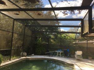 Pool Screen Cover Photo