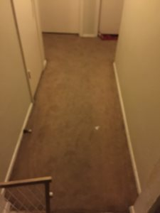 Guest Rooms Flooring  Cover Photo