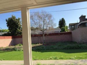 Garden Cover Photo