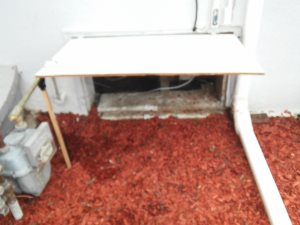 Crawlspace Cleaning Cover Photo