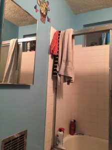 Paint Bathroom Cover Photo