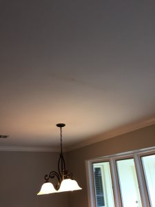 Ceiling Repair And Light Installation Cover Photo