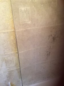 Shower Wall Replacement  Cover Photo