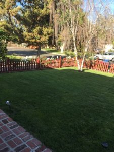 Front Yard Fence And Motorized Car Gate Cover Photo