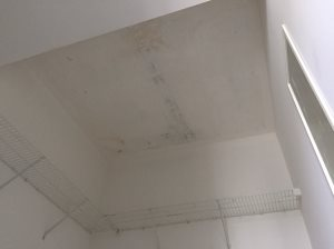 Plaster/Skim Coat Ceiling Cover Photo