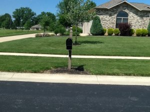 D it Yourself Landscaping