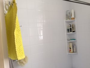 Glass Shower Cover Photo