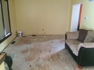 Living Room Flooring  Cover Photo