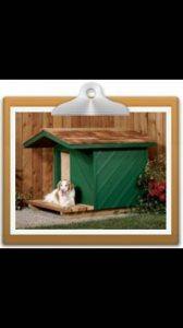 Dog House Cover Photo