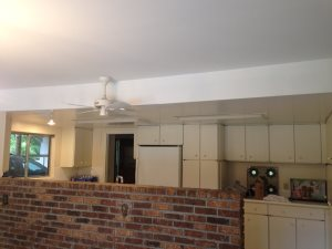 Remove Hollow Ceiling Cover Photo