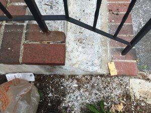 Installing Brick Veneer