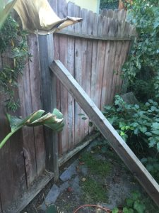 Wood Fence Repair Cover Photo