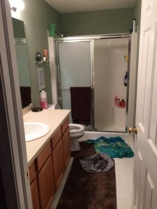 Redo Bathroom