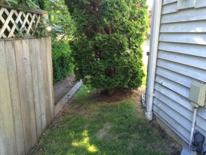 Fence Estimate Cover Photo
