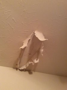 Ceiling Sheetrock Repair  Cover Photo