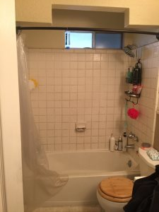 Install New Shower Cover Photo