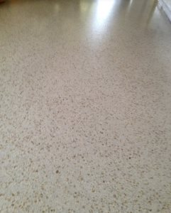 Terrazzo Floors Cover Photo